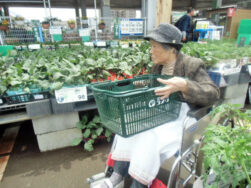 外出活動|長岡三古老人福祉会