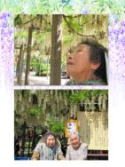 外出レク~藤の花見学~|長岡三古老人福祉会