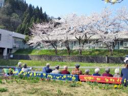 花見びより(長岡市デイサービスセンターみしま)|長岡三古老人福祉会