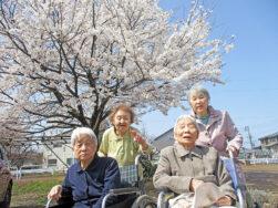 満開の桜の下で|長岡三古老人福祉会