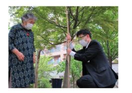 無患子の木|長岡三古老人福祉会