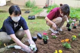 花植え|長岡三古老人福祉会