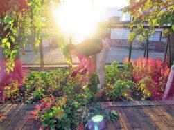 環境整備係委員会が花壇の草取りをしました。|長岡三古老人福祉会